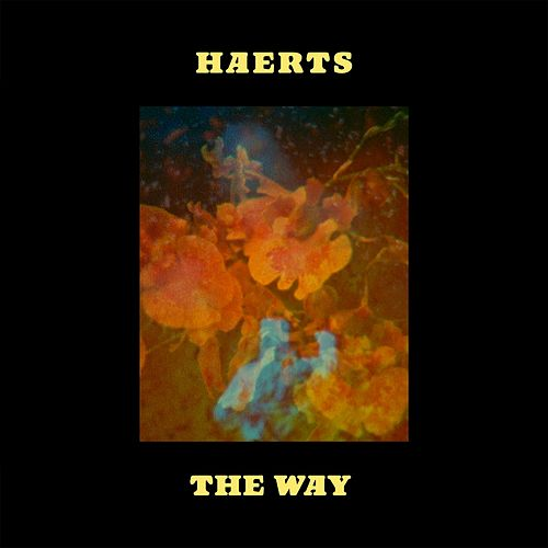 The Way by Haerts