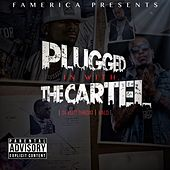 Plugged in with the Cartel von Ralo