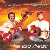 The Third Stream by Ashwin Batish