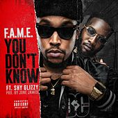 You Don't Know (feat. Shy Glizzy) by Fame