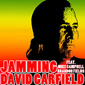 Jamming by David Garfield