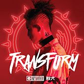 Transform by Various Artists