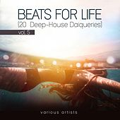 Beats For Life, Vol. 5 (20 Deep-House Daiqueries) by Various Artists