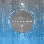 For Your Purpose by Lee Brown