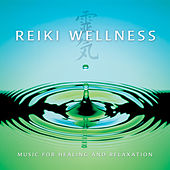 Reiki Wellness de Various Artists