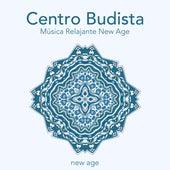 Centro budista - Música relajante new age para meditar, lograr la paz interior con los mejores sonidos de la naturaleza de Musica para Dormir 101