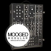 Mooged Modular #002 - EP by Various Artists