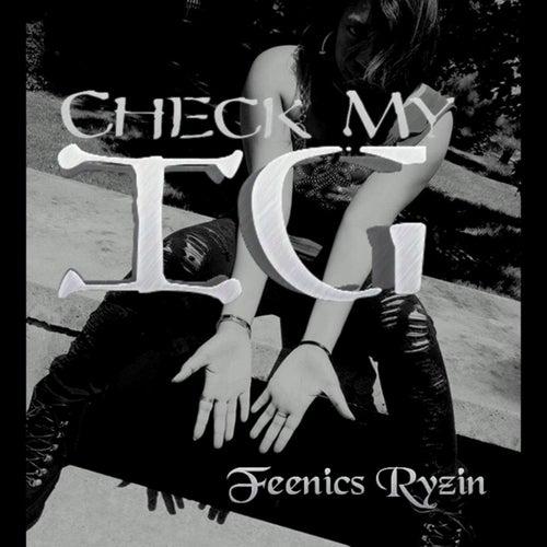 Check My I.G. by Feenics Ryzin
