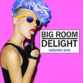 Big Room Delight, Vol. 1 by Various Artists