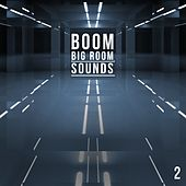 Boom, Vol. 2 - Big Room Sounds by Various Artists