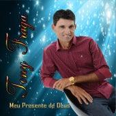 Meu Presente de Deus by Tony Fraga