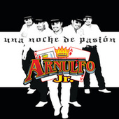 Una Noche de Pasion by Arnulfo Jr. Rey Y As