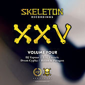 XXV Project Volume Four by Various Artists