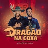 Dragão na Coxa von Davi & Fernando