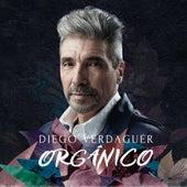 Orgánico de Diego Verdaguer