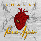 Never Again by Shalli