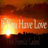 If You Have Love (Mix) by Cristian Paduraru