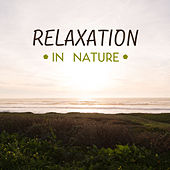 Relaxation in Nature de Nature Sounds Artists
