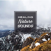 Healing Nature Sounds by Echoes of Nature