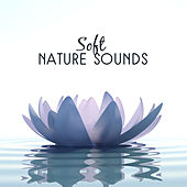 Soft Nature Sounds by Nature Sounds (1)