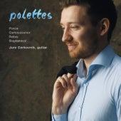 Palettes by Jure Cerkovnik