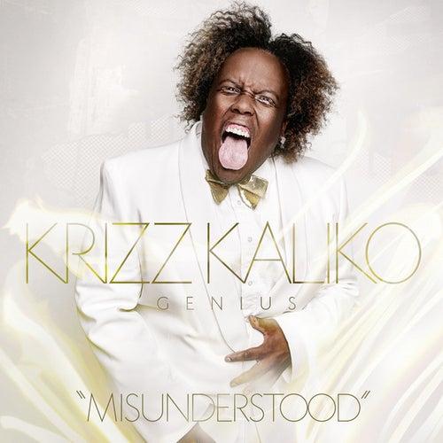 Misunderstood by Krizz Kaliko