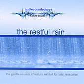The Restful Rain by Audiosoundscapes