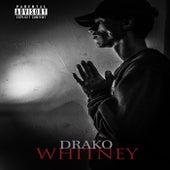 Whitney by Dra-Ko