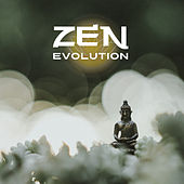 Zen Evolution by Echoes of Nature