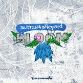 Bloom von Sultan + Shepard
