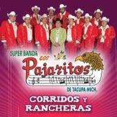 Corridos Y Rancheras by Los Pajaritos De Tacupa