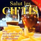 Salut les ch'tis - Vol. 3 by Various Artists