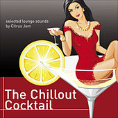 The Chillout Cocktail (Selected Lounge Sounds) von Various Artists