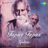Tapur Tupur - Tagore Poems for Children by Gulzar by Gulzar