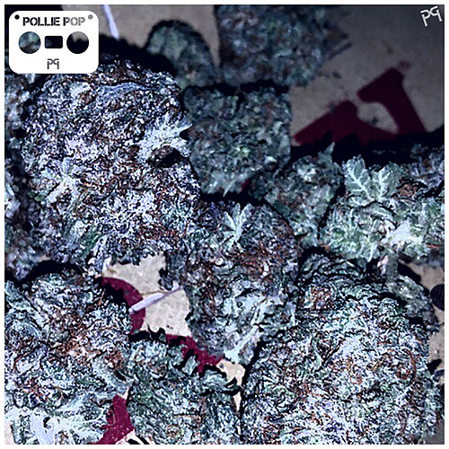 28 Grams Vol. 19 (Screwed) by Pollie Pop