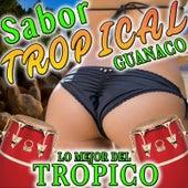 Sabor Tropical Guanaco Lo Mejor del Tropico by Various Artists
