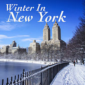Winter In New York de Various Artists