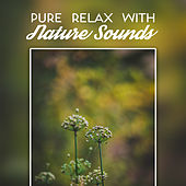 Pure Relax with Nature Sounds de Nature Sound Collection