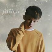 Cozy by Jacob Sartorius