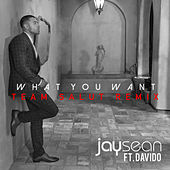 What You Want (Team Salut Remix) by Davido