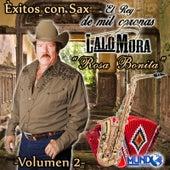 Exitos Con Sax, Vol,2 by Lalo Mora