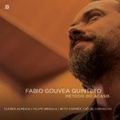 Método do Acaso by Fabio Gouvea Quinteto