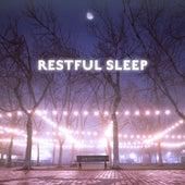 Restful Sleep de Sounds Of Nature