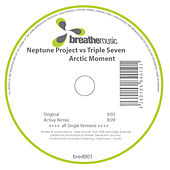 Arctic Moment by Neptune Project