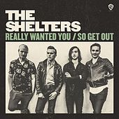 Really Wanted You de The Shelters