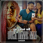 Duka Danne Nam - Single by Ginger