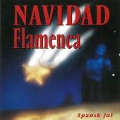 Spansk Jul by Navidad Flamenca
