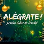 Alégrate! Grandes Éxitos de Navidad by Various Artists