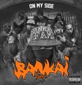 On My Side von The Skanks