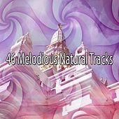 46 Melodious Natural Tracks de Massage Tribe